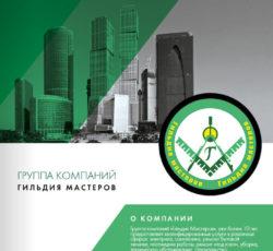 Гильдия Мастеров техническое обслуживание организаций и компаний 01